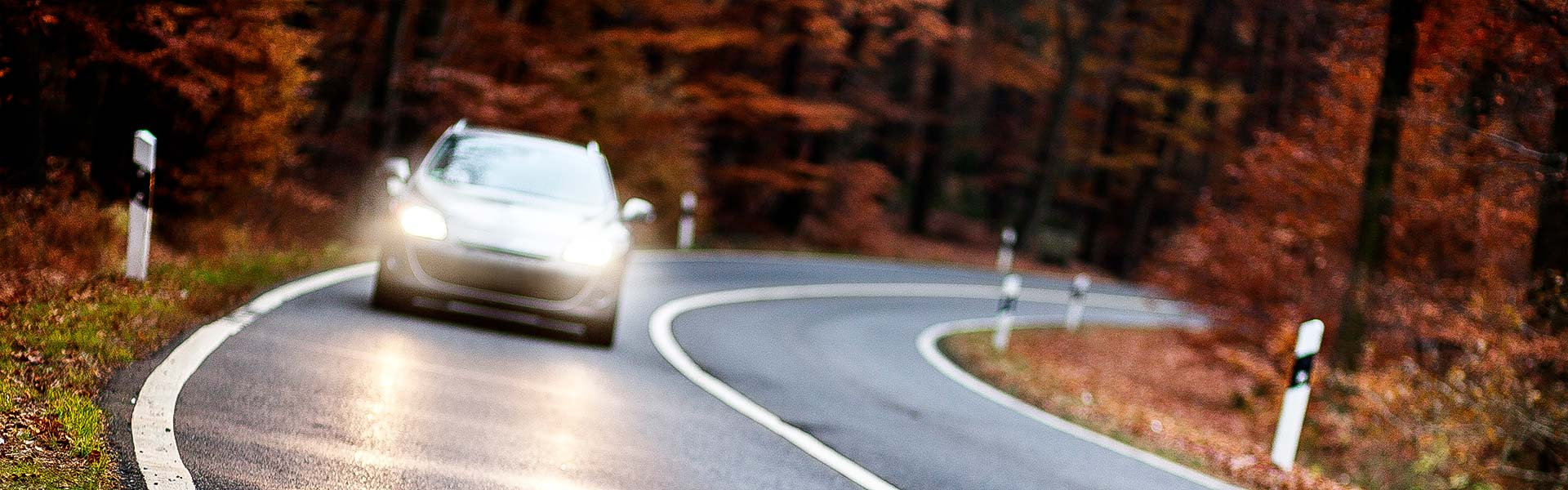 Fall Back: Adjusting Your Driving to the Changing Season